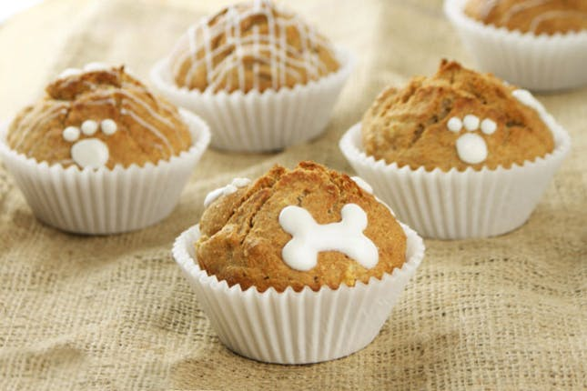 Apple Crunch Cupcakes for Dogs