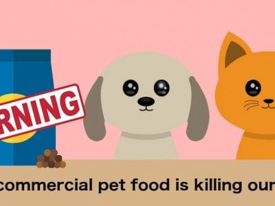 How Commercial Pet Food Is Killing Our Pets
